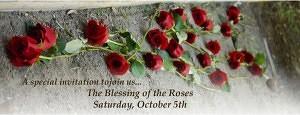 BoR Roses Invite