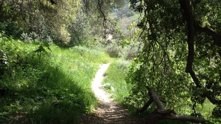 Ascent of Mt. Carmel Hike