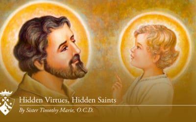 Hidden Virtues Hidden Saints