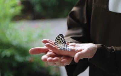 Carmelite Musings | Resistance